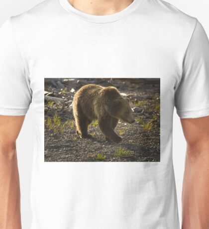Grizzly Bear-Signed-#4429 Unisex T-Shirt