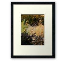 Bosque Brush Framed Print