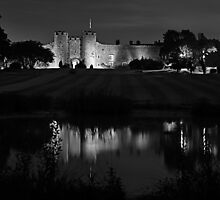 low light castle duotone by Ilapin