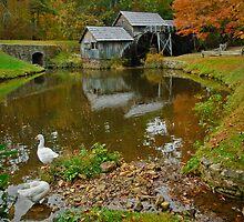 Mr Mabrys Mill by Robert H Carney