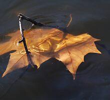 Gold Leaf by jesika