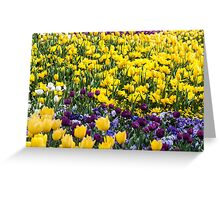 Floral Delight Greeting Card