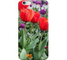 Red and purple tulips iPhone Case/Skin