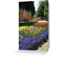 Tulip Time in Australia 15 Photograph by Heather Holland Greeting Card