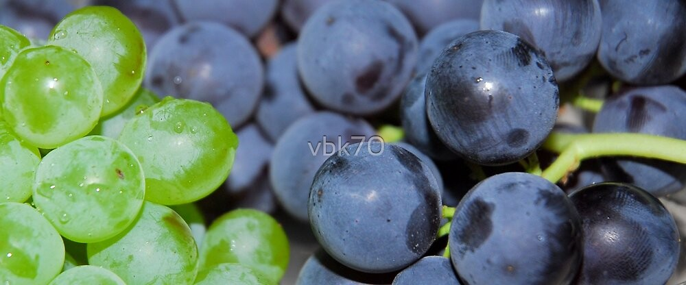 Grapes by vbk70