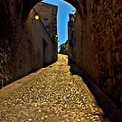 Old arch over narrow street in Caceres by Gabor Pozsgai