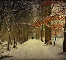 Enchanting Dutch Winter Landscape by AnnieSnel