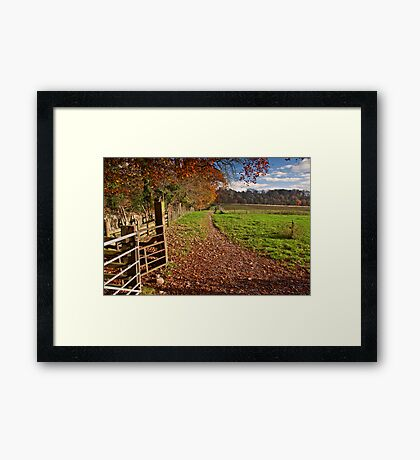 Autumn in the Ribble Valley Framed Print