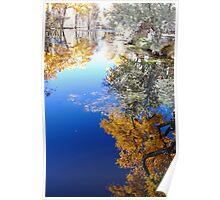 Vertical Pond Reflection - La Cienega, NM Poster