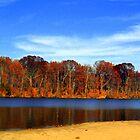 A Beautiful Day in Ohio by debbiedoda