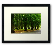 I would rather be with trees Framed Print
