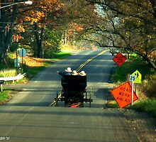 Road Work? by Marcia Rubin