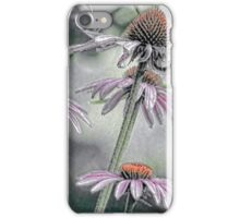 Summer Coneflowers iPhone Case/Skin