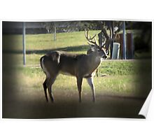 8 Point Poster