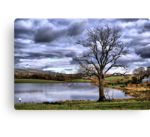 Lonely Tree At the Trout Lake Canvas Print
