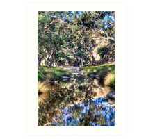 Marne reflections Art Print