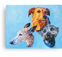 Holly, Red and Buddy! Canvas Print