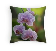 Eye Appealing Orchids Throw Pillow