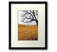 Tree & Fence Framed Print