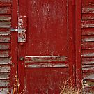 Red Door by Christina Apelseth