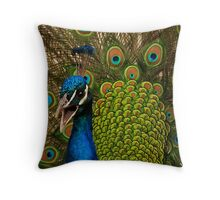 Call to Soulmate Throw Pillow