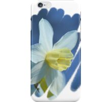 Pretty Daffodils iPhone Case/Skin