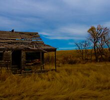 Little House on the Prairie by Christina Apelseth