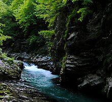 Vintger gorge, Slovenia by kirstenfairfax