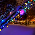 Electric Christmas by photodork