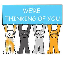 We're thinking of you cartoon cats. by KateTaylor