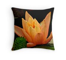 Beauty outside Emergency Throw Pillow