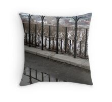 Double barrier Throw Pillow