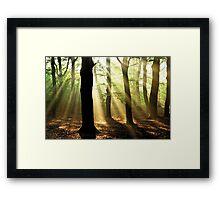The gift of the morning light Framed Print