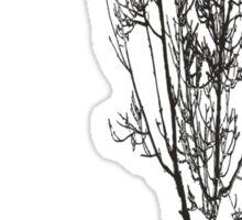 Bird in tree Sticker