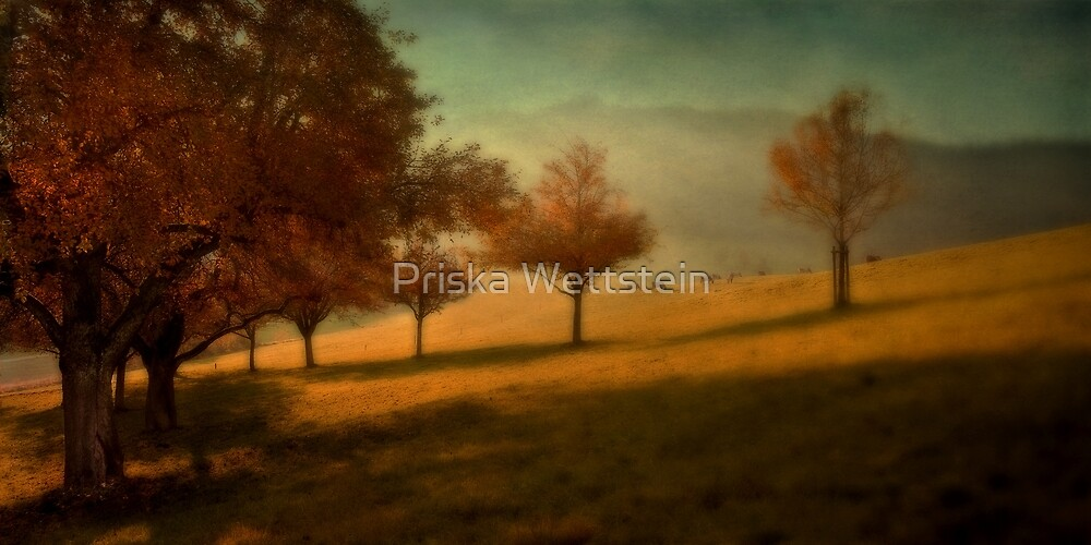 Swiss Idyll by Priska Wettstein