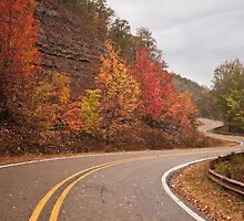 Winding Road by Todd Ward