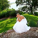 Beautiful Brides by Leta Davenport