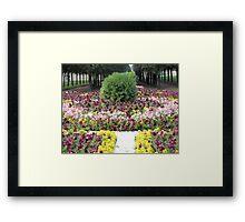 decor Framed Print