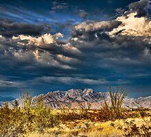 Stormy Mountains- Near Yucca, Arizona by Jerald Johnson