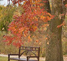 Fall's Saddness by Maryna Gumenyuk