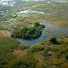 Aerial over Okavango Delta (1) by Margaret  Hyde