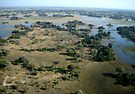 Aerial of Okavango Delta, Botswana,  (2) by Margaret  Hyde