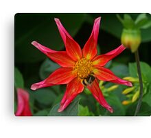 Octet for a Bee Canvas Print