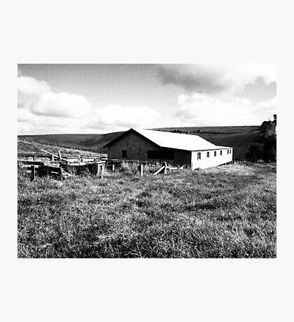 Old Farm Shed Photographic Print