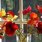 pretty poppies by BronReid