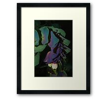 Unusual flower Framed Print