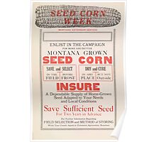 United States Department of Agriculture Poster 0236 Montana Grown Seed Corn Poster