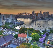 Jackarandah Dawn - Sydney Harbour, Sydney Australia by Philip Johnson