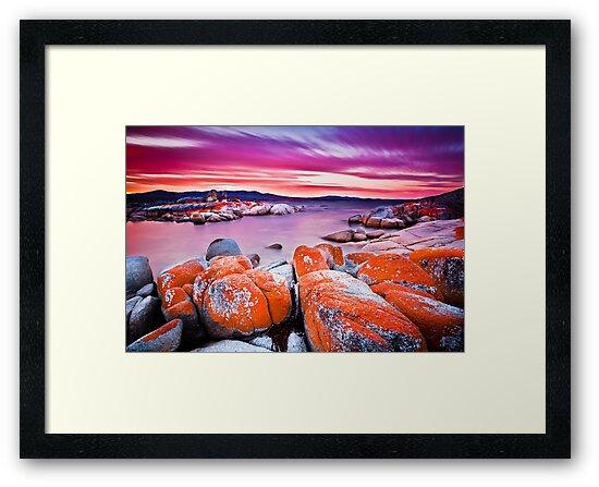 Binalong Bay, Bay of Fires, Tasmania by Matthew Stewart