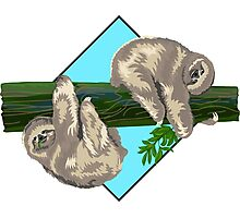 two sloth on a tree branch Photographic Print